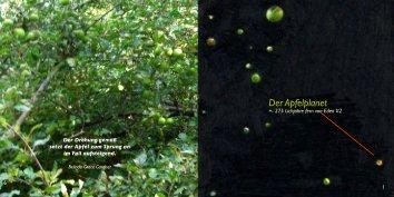 Der Apfelplanet - garteneden2