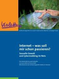 Internet - was soll mir schon passieren? Arbeitshilfe - Violetta