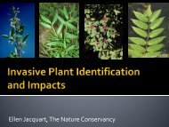 Ellen Jacquart, The Nature Conservancy