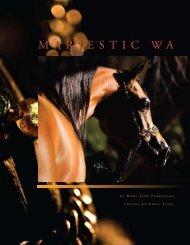 Arabian Horse World ~ Brochure - Marjestic WA