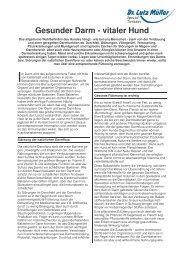 Gesunder Darm- Vitaler Hund.pdf