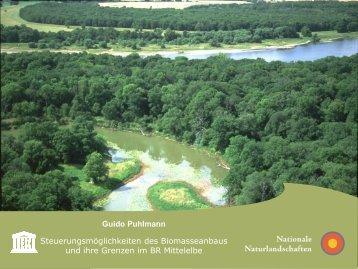Guido Puhlmann Steuerungsmöglichkeiten des Biomasseanbaus ...