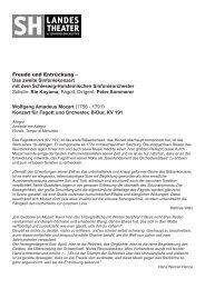 weitere infos - Schleswig-Holsteinisches Landestheater und ...