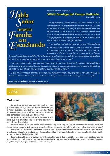 XXVIII Domingo del Tiempo Ordinario - Apostolado del Rosario en ...