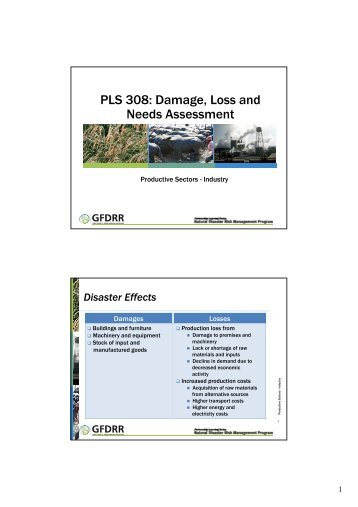 PLS 308: Damage, Loss and Needs Assessment - Pacific Disaster Net