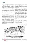 Mineral-guide - Prospektering for amatører (5.91 MB) - Ujarassiorit - Page 6