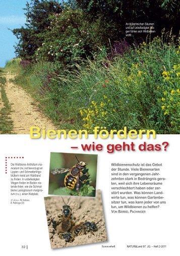 Bienen fördern - Naturschutzbund