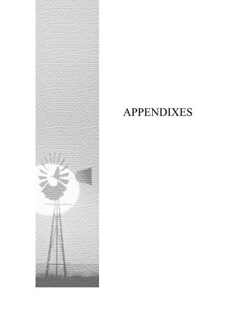 APPENDIXES - Texas Commission on Environmental Quality