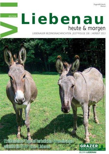 PDF azeigen - Die Grazer Volkspartei