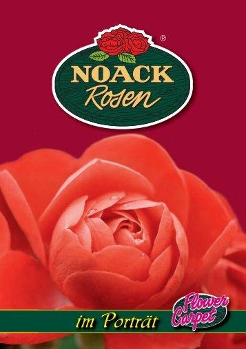 im Porträt - Noack Rosen