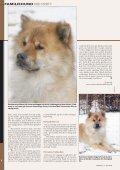 Eurasier - Hunden - Page 3