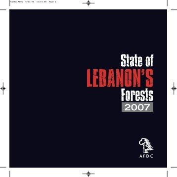 Download PDF - Policy Lebanon