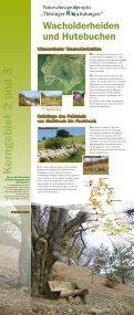 Wanderausstellung - Kerngebiete - Naturschutzgroßprojekt ... - Seite 2
