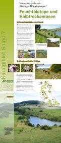 Wanderausstellung - Kerngebiete - Naturschutzgroßprojekt ... - Seite 3