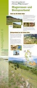 Wanderausstellung - Kerngebiete - Naturschutzgroßprojekt ... - Seite 4