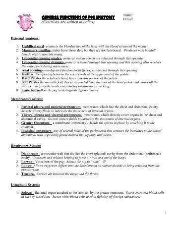 General Functions of Pig Anatomy General Functions of Pig ...