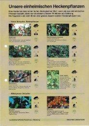 Unsere einheimischen Heckenpflanzen - Pro Natura Fribourg