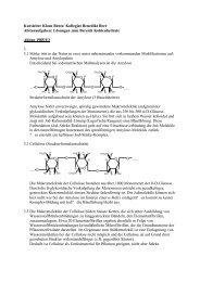 ABITURAUFGABEN Kohlenhydrate Loesungen1.DOC