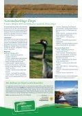 Urlauber-Klöntür - Tourismusverband - Seite 5