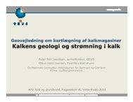 Kalkens geologi og strømning i kalk - ATV Jord og Grundvand