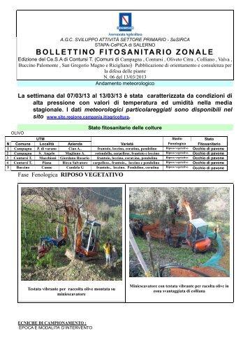 Contursi (SA) - Regione Campania