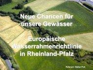 Allgemeiner Vortrag - Struktur- und Genehmigungsdirektion Süd - in ...