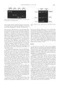 Soto 3_5 - Universidad de Cantabria - Page 3
