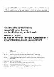 Neue Projekte zur Gewinnung hydroelektrischer ... - SGBF-SSMSR