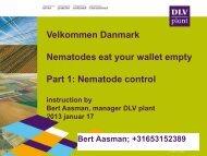 DLV Plant