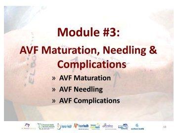 Vascular Access Module #3: AVF Maturation ... - BC Renal Agency