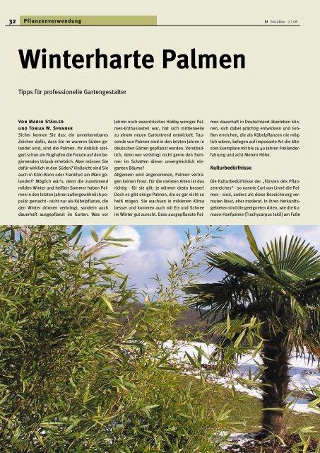 Winterharte Palmen - Melminsider