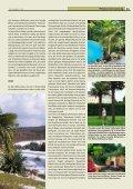 Winterharte Palmen - Melminsider - Seite 2