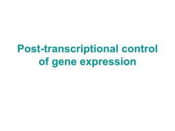 Post-transcriptional control of gene expression