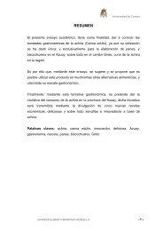 RESUMEN - Repositorio de la Universidad de Cuenca