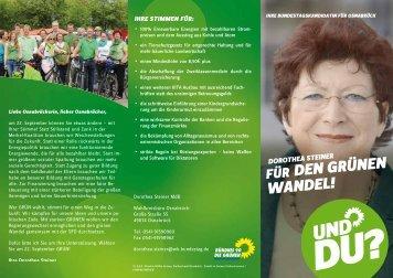 Wahlkampf-Flyer - Dorothea Steiner, MdB