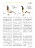 !Tricks für Zucht und Reise - Seite 7