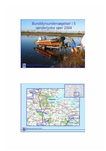 Bunddyrsundersøgelser i 5 sønderjyske søer 2004