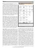 Neolithic mitochondrial haplogroup H genomes and the genetic - ICB - Page 4