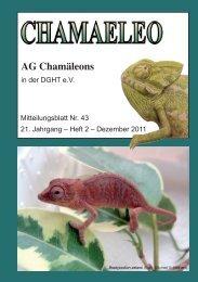 CHAMAELEO Ausgabe Nr 43 - Website der AG Chamäleons
