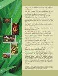 brochure final print - Shree Hareeyam Arya Viadya Sala - Page 6