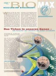 Das Ticken in unseren Genen – - Scinexx