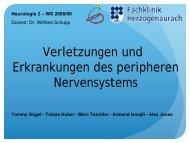 Verletzungen und Erkrankungen des peripheren Nervensystems.pdf