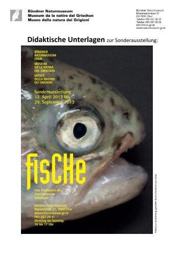 FisCHe - Bündner Naturmuseum - Kanton Graubünden