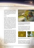 Januar 2008 - Mars Society Deutschland e.V. - Seite 7