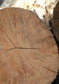 Möbel aus Massivholz. - Seite 5