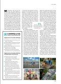 Wenn Kinder unfreiwillig Verantwortung - Cornelius-stiftung.de - Seite 2