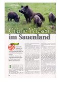 Bericht Unsere Jagd - The Hunter - Page 2