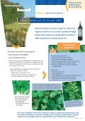 et la viticulture - Plocher-france - Page 3