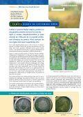 et la viticulture - Plocher-france - Page 5