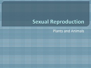 Sexual Repro